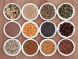 Kerne und Samen